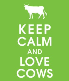 Keep lovin' them cows